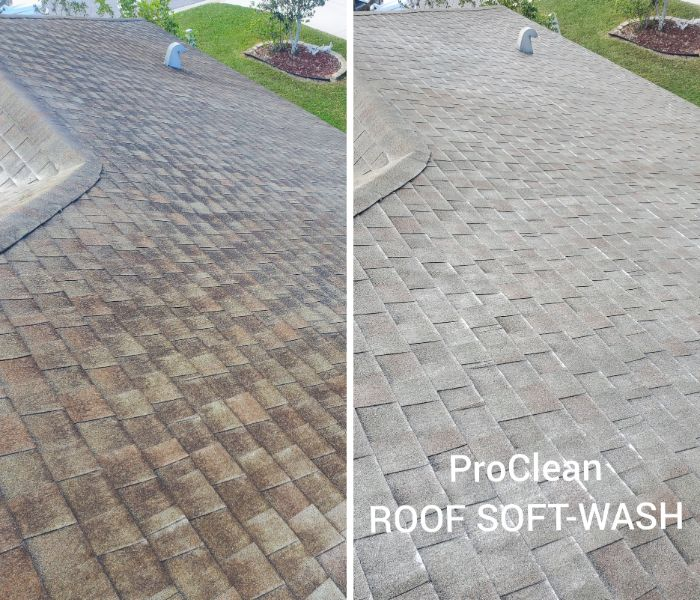 roof cleaning service West Bloomfield